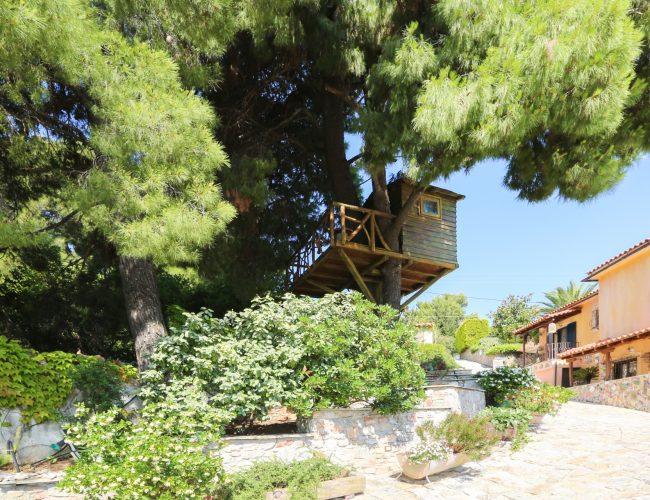 villa-apartments-skiathos-gallery-13